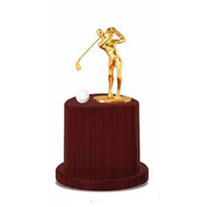 Digital Craft  Golf Trophy Btc 240