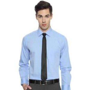 Arrow Formal Shirt White Light Blue